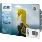 Cartucho Original Epson T0487